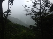 in the clouds at aiea loop trail