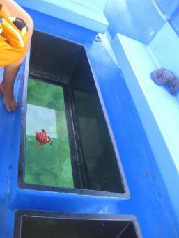 Glass bottom boat, Kuta, Bali