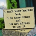 Funny-Quotes-I-dont-know-karate-but-I-do-know-crazy-and-Im-not-afraid-to-use-it