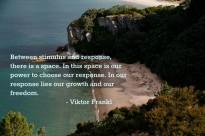 Viktor-Frankl--1024x682
